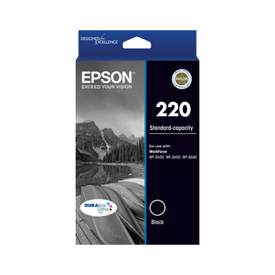 Epson C13T293192 220 Standard Capacity DURABrite Ultra Black ink (yield, up to 160 pages)
