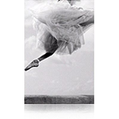 Epson C13S041637 Velvet Fine Art Paper (20 Sheets)