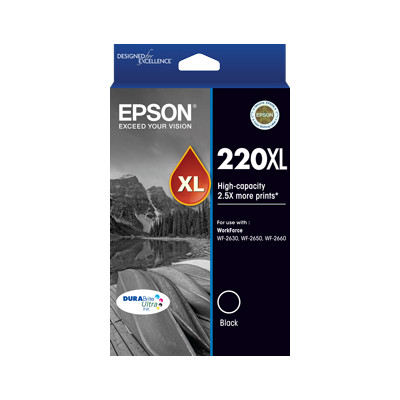 Epson C13T294192 220XL High Capacity DURABrite Ultra Black ink (Yields up to 400 pages)