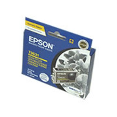 Epson C13T063190 Black Ink Cartridge