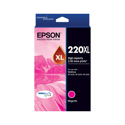 Epson C13T294392 220XL High Capacity DURABrite Ultra Magenta ink (Yields up to 450 pages)