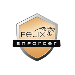 Felix Enforcer Security (T1F-EPE01-017-FA), Protectes against Malware and Threats,1 User,12 Month, OEM
