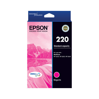 Epson C13T293392 220 Standard Capacity DURABrite Ultra Magenta ink (yields up to 165 pages)